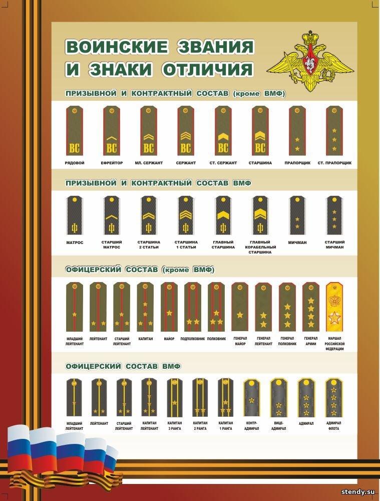 Звания и погоны в картинках в российской армии