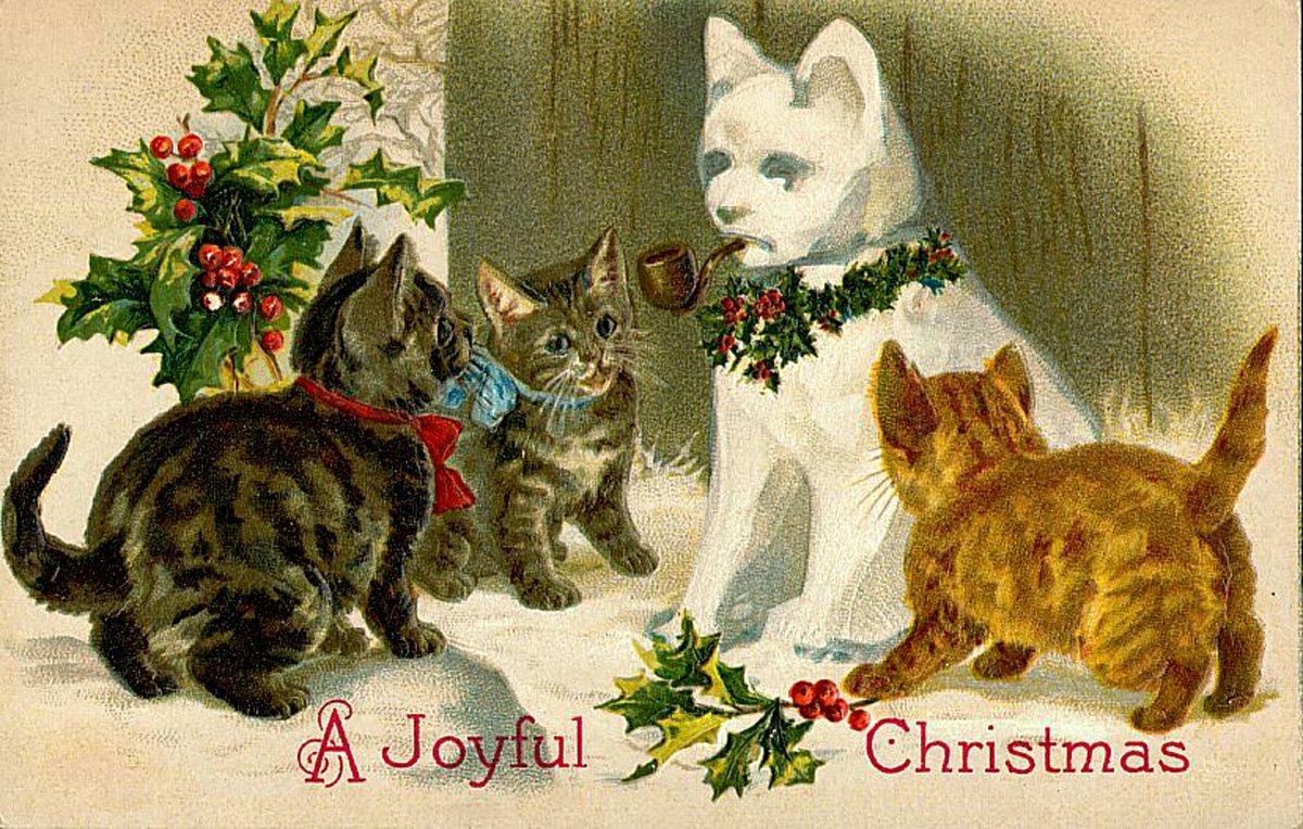 С рождеством открытки котики