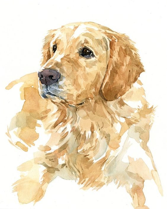 Собака нарисованная красками картинки