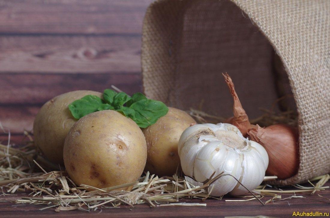 Картошка чеснок и лук убивают грипп