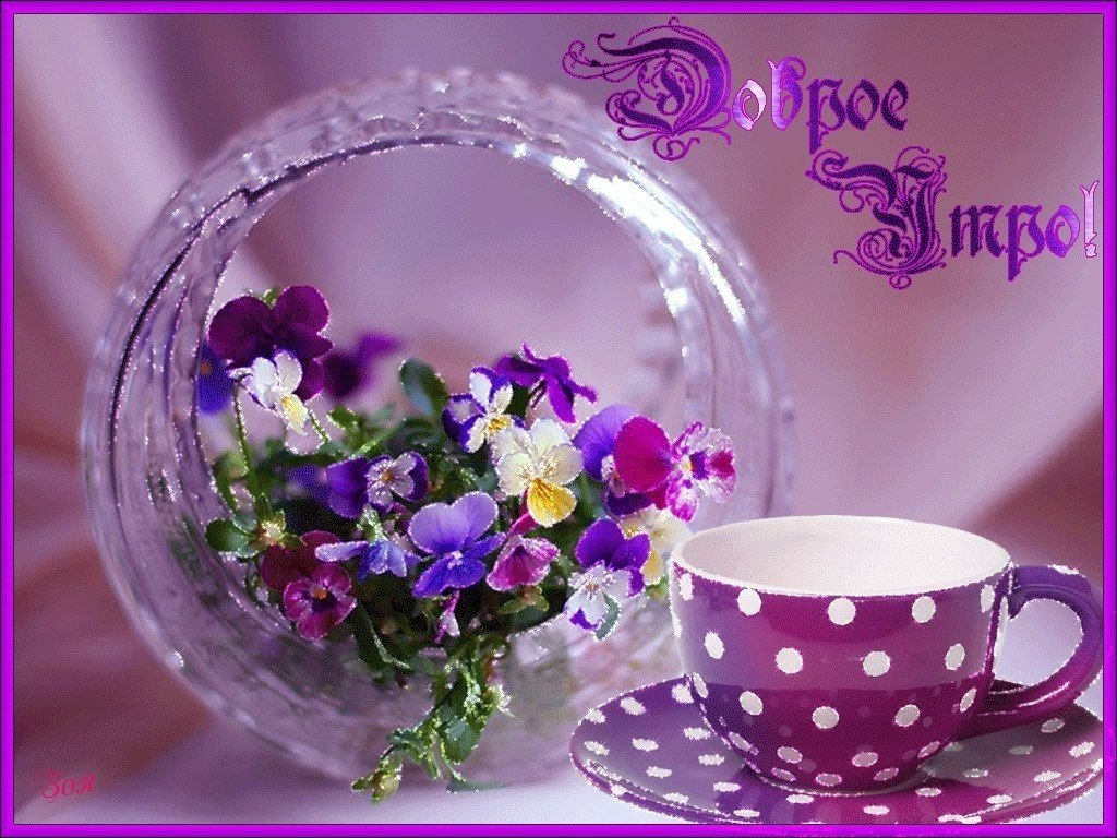 Доброе утро открытка красивая с цветами, шалом картинки