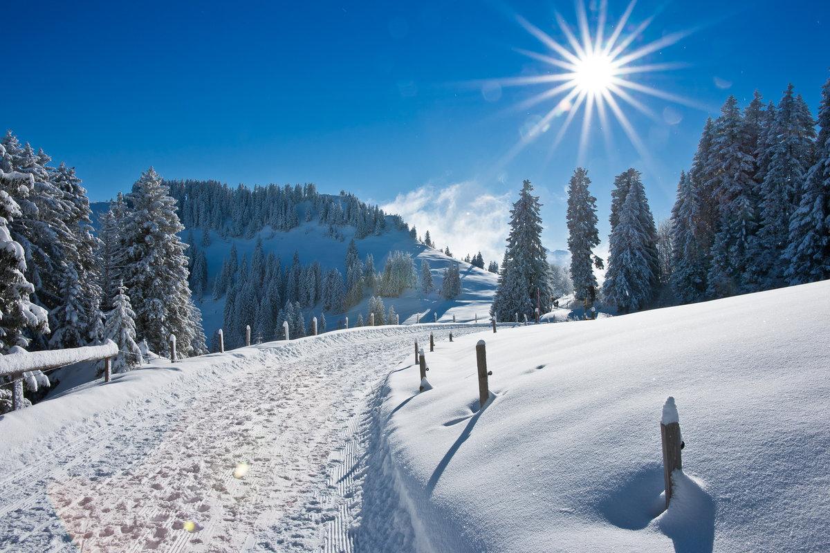 Картинки зимой природа