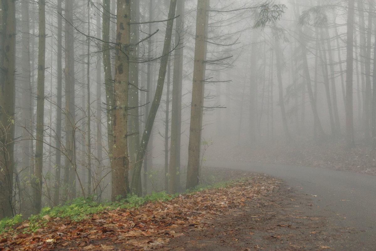 Непрерывная продолжительность туманов составляет обычно от Ð½ÐµÑÐºÐ¾Ð»ÑŒÐºÐ¸Ñ Ñ‡Ð°ÑÐ¾Ð² (а иногда полчаса-час) до Ð½ÐµÑÐºÐ¾Ð»ÑŒÐºÐ¸Ñ ÑÑƒÑ'ок, особенно в Ñолодный период года.