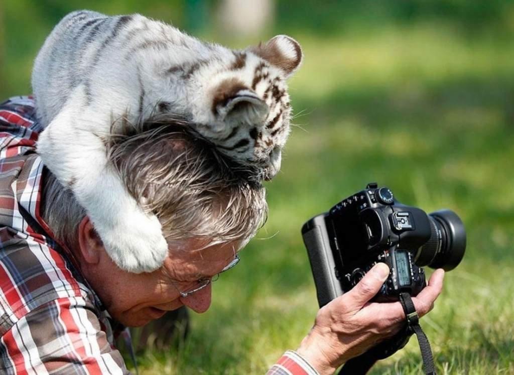 Прикольная картинка про фотографа, для нового