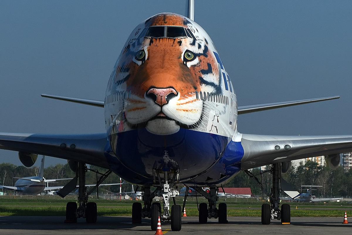 Самолеты картинки прикольные