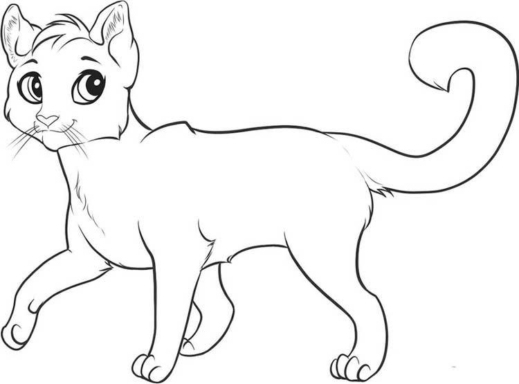 картинки намальованого котика год питомники