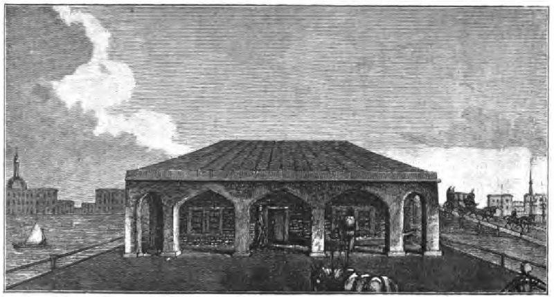 Домик Петра Великого в начале XIX века.