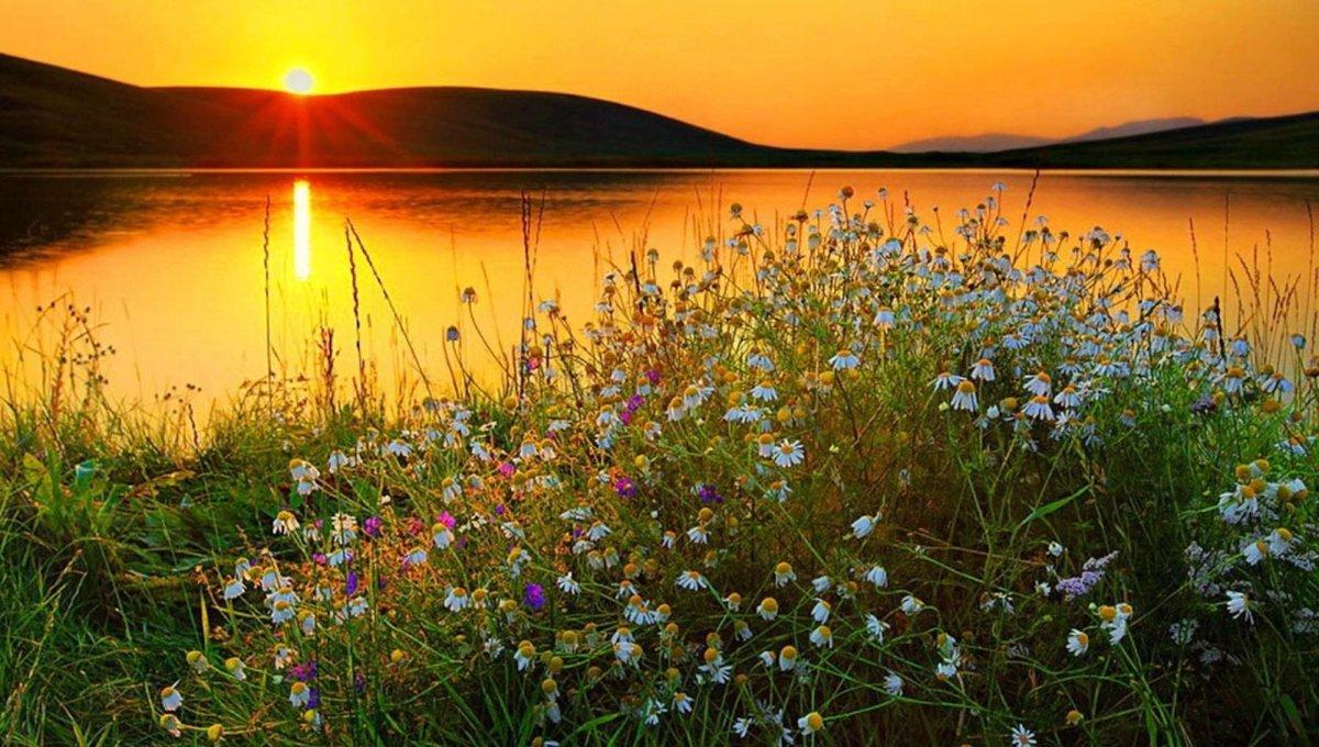 Надпись весной, доброго летнего вечера красивые картинки