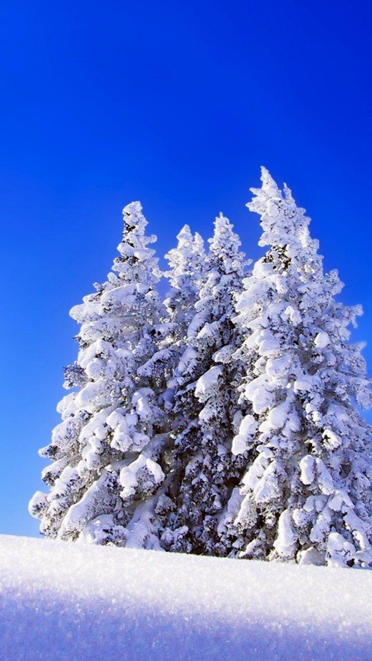 картинки для самсунга зима все знают чем