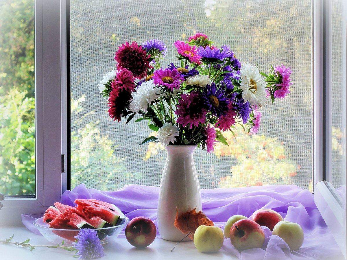 Картинки цветок на окне