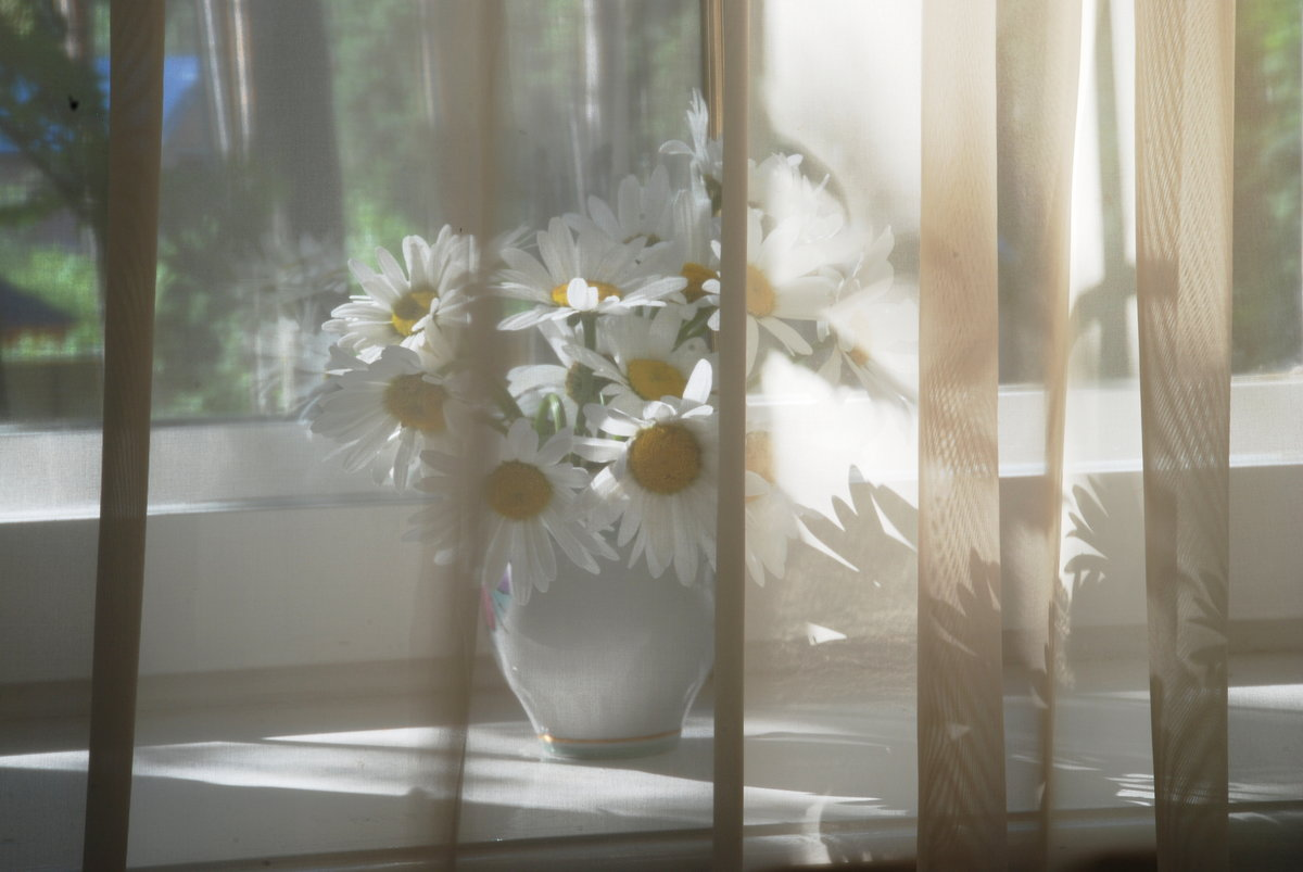 Картинки анимации солнце в окно