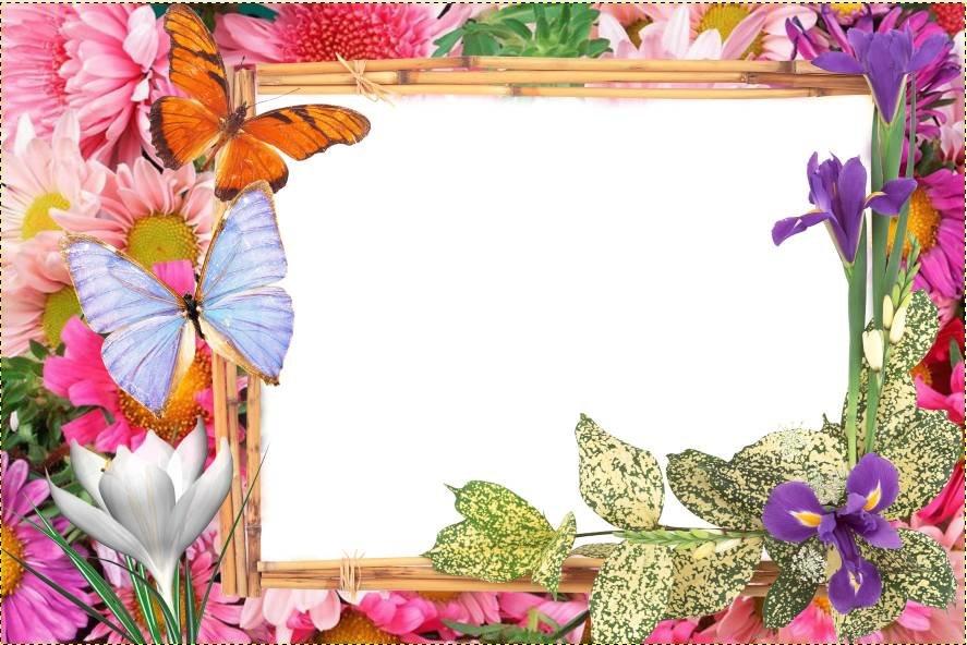 Поздравление днем, открытка летняя шаблон