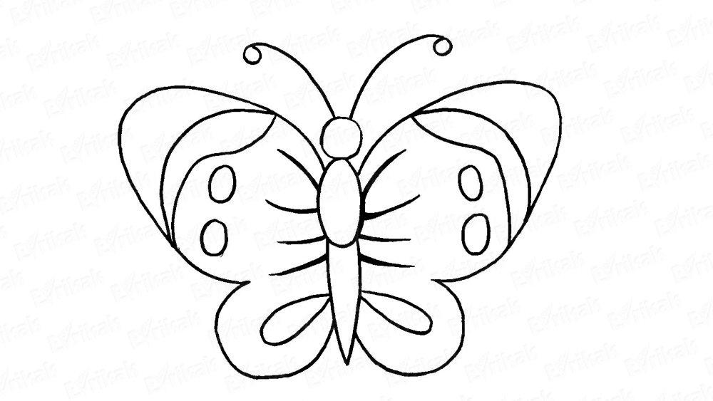 Днем, бабочки рисунки карандашом картинки