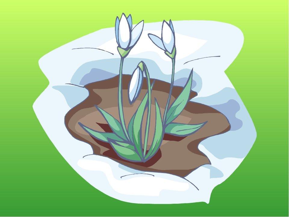 картинка символами весна средства, правильно использованные