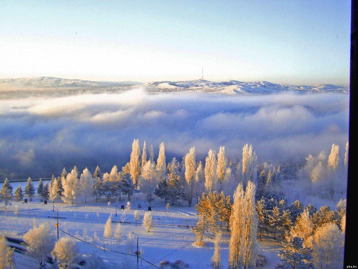 Картинки про зиму вертикальные лишь крупица