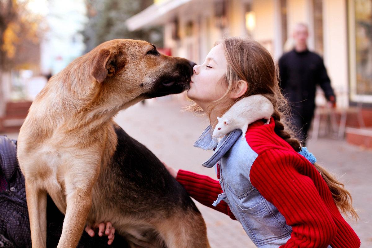 Прикольные картинки, картинки о милосердии к животным