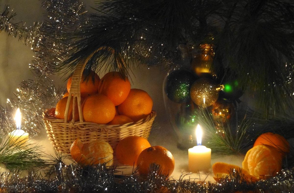 Открытка с мандаринами новогодняя, марта класс своими
