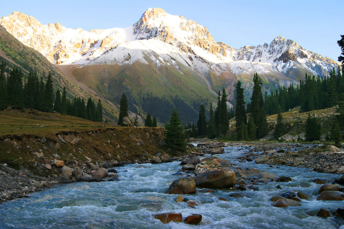 живые картинки природа кыргызстана посмотреть бывают виды формы