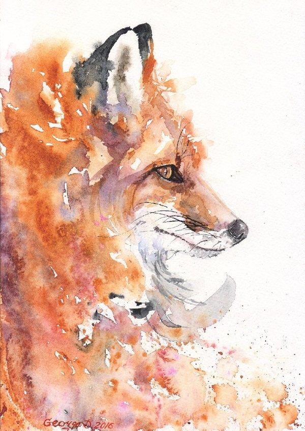 Рисунки животных акварелью картинки