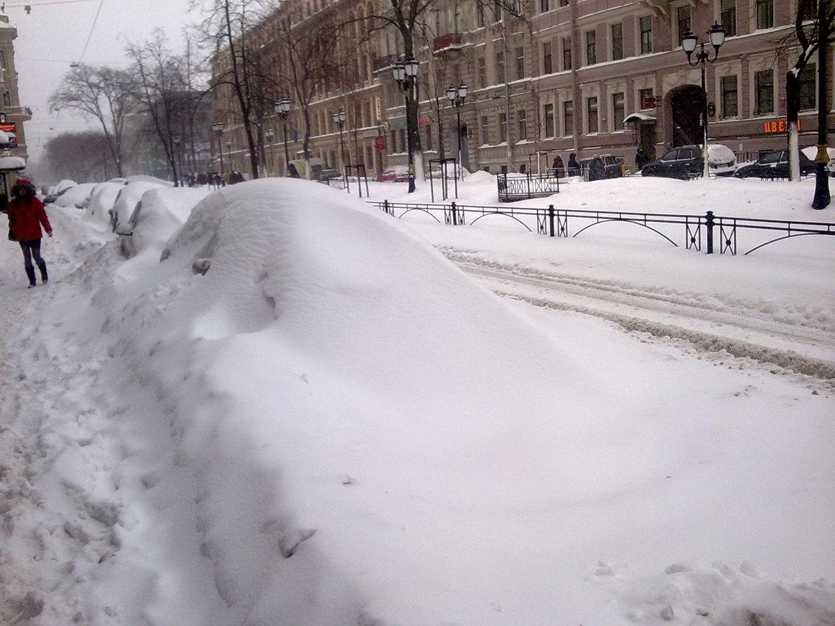 йод снег в питере сегодня фото собой