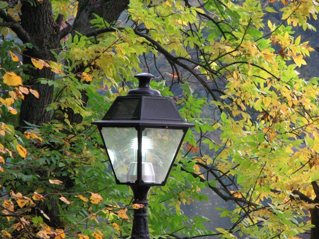Осенние фонари в картинках