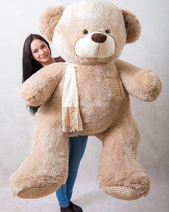Картинки больших плюшевых медведей