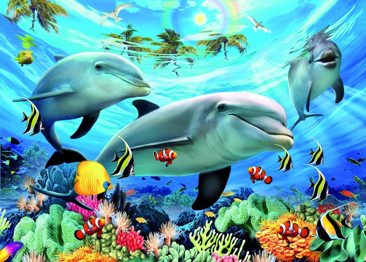 Смешные, открытки подводные