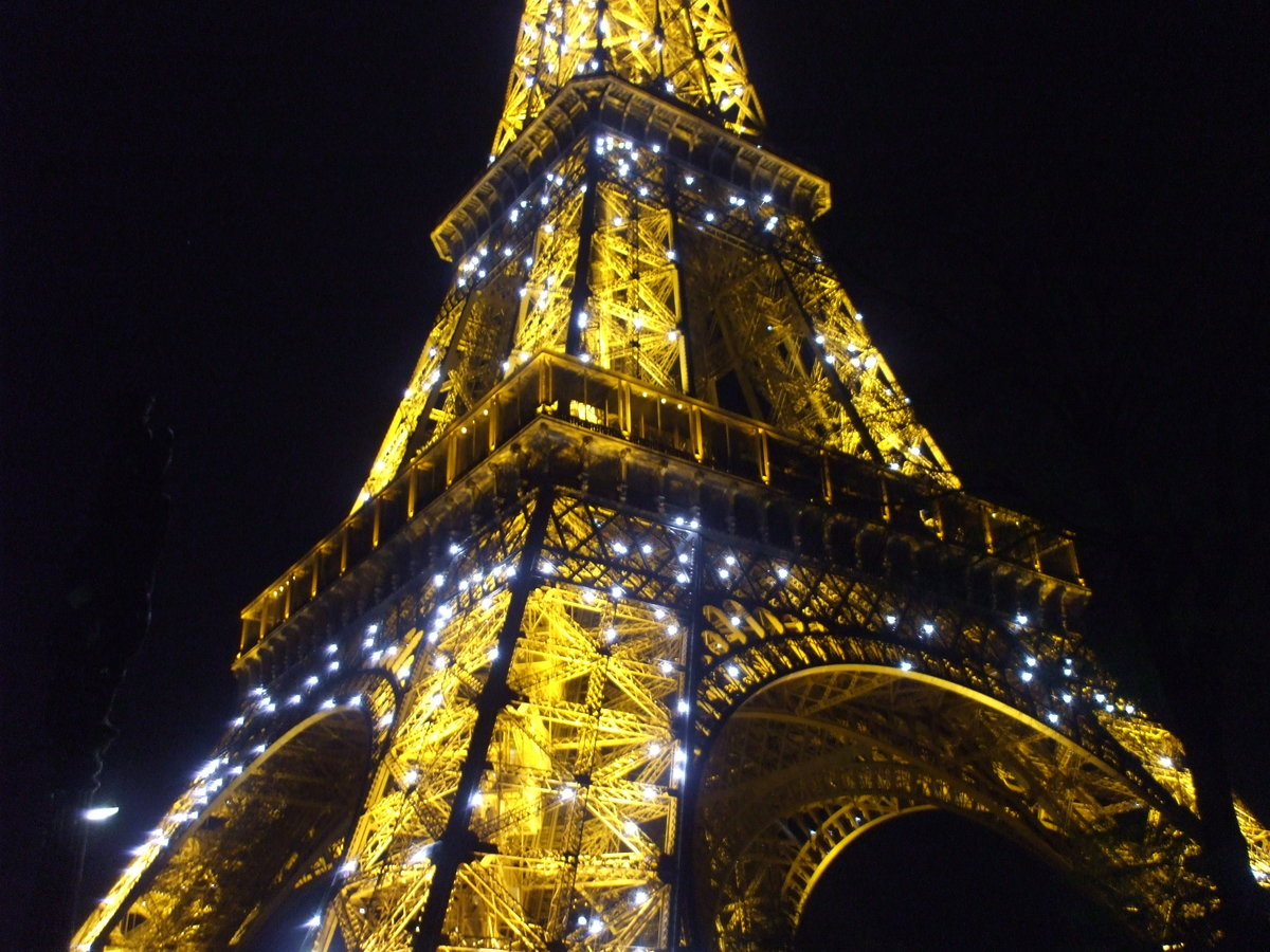 картинки эйфелевой башни блестящие желающим