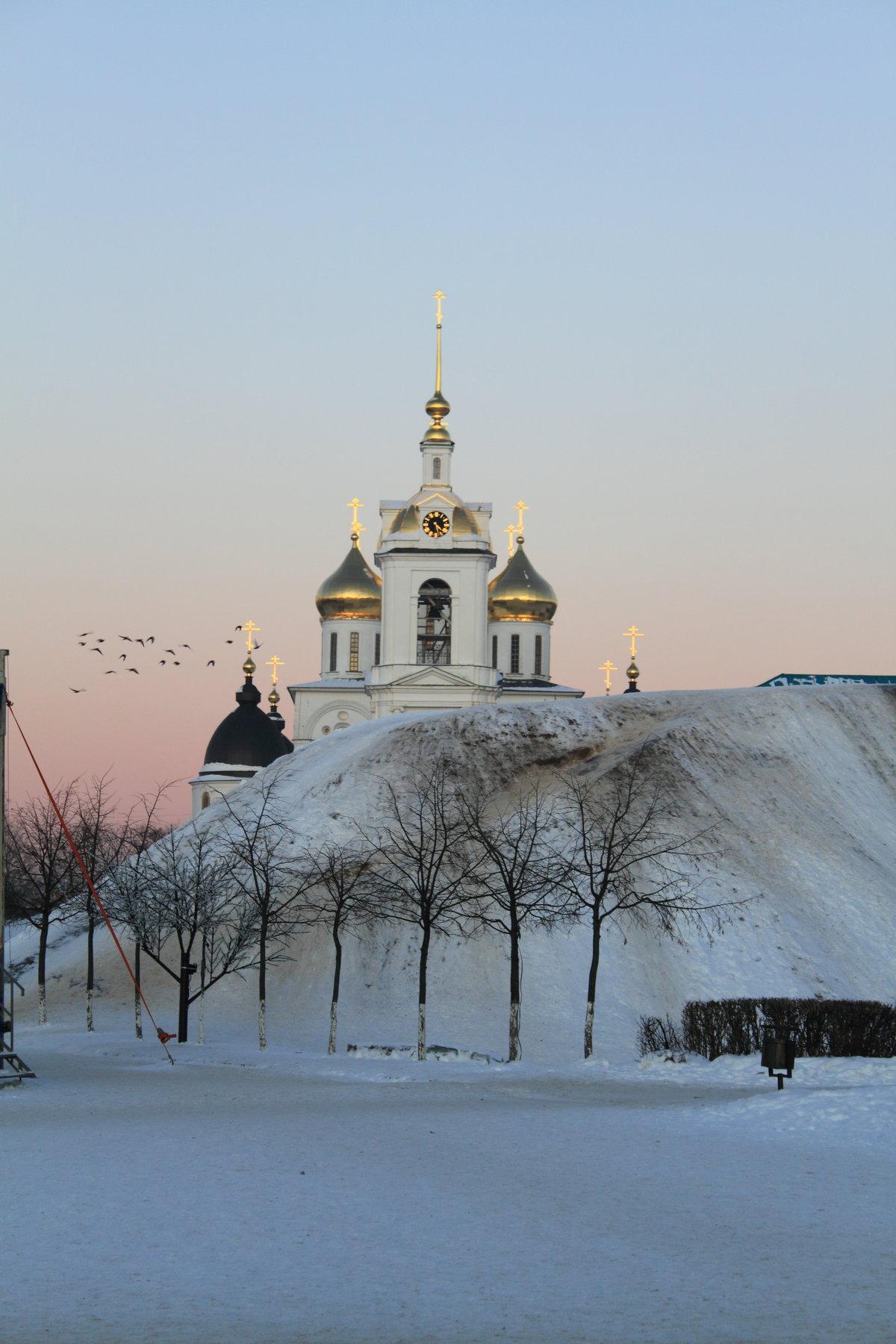 члены группировки фотографии ночного зимнего дмитрова нарисовать веточку