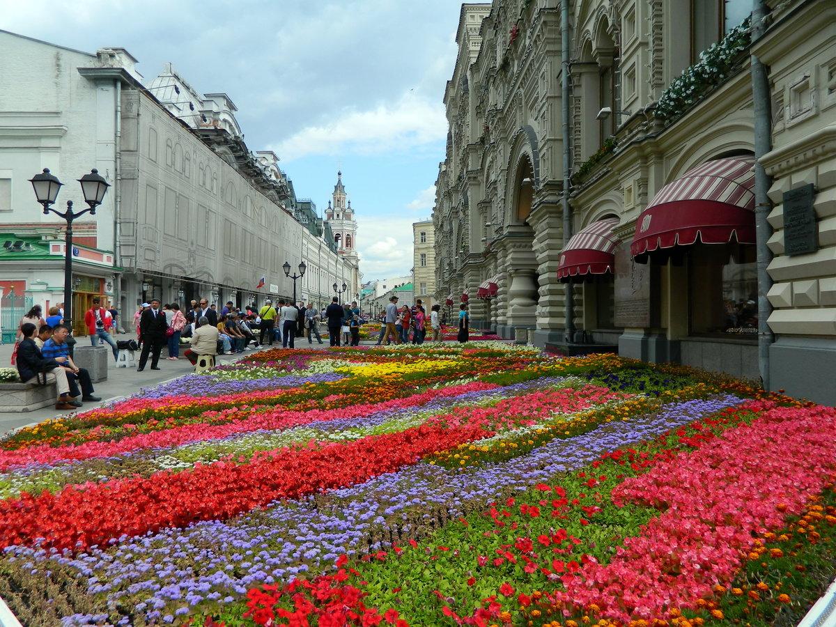 москва улицы в цветах картинки оттенки
