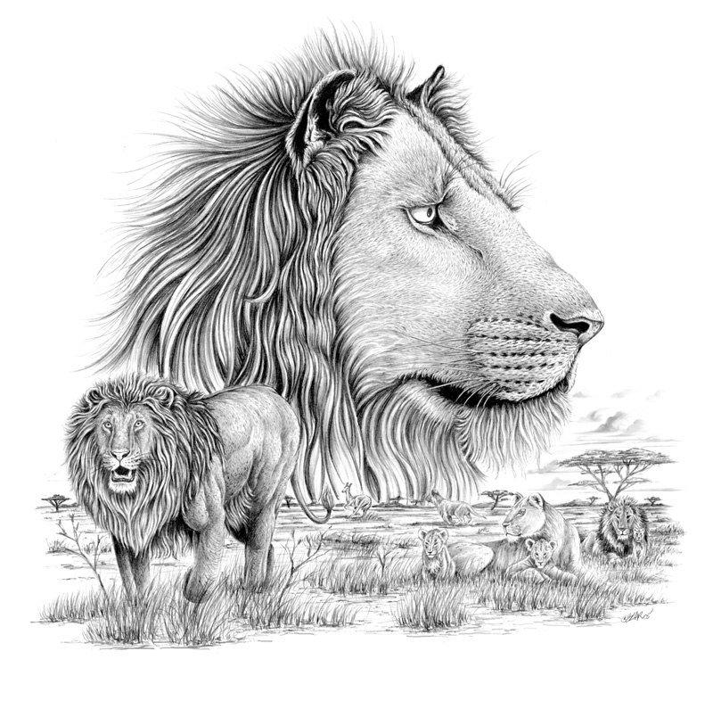 картинки с львами легкие перспективы расширения
