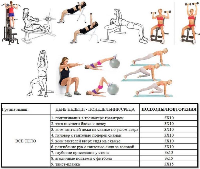 женская программа тренировок в тренажерном зале