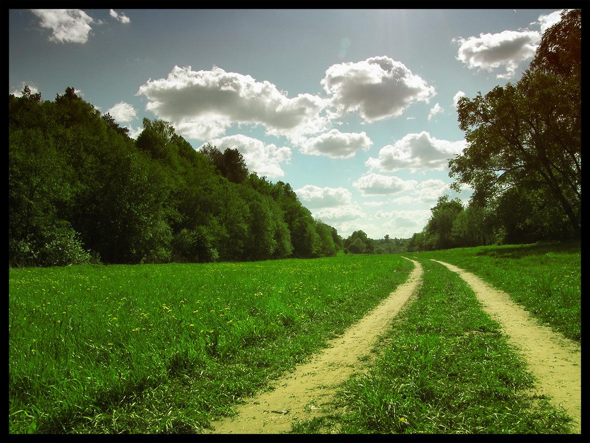Дорога домой картинки красивые