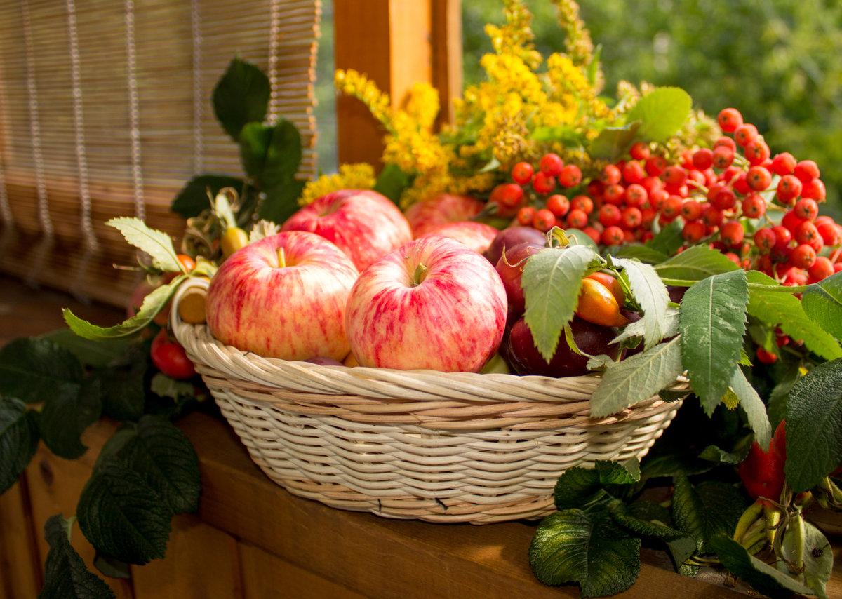 Открытки осень урожай