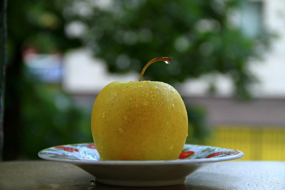 только фото яблоки с каплями дождя курорт название отеля