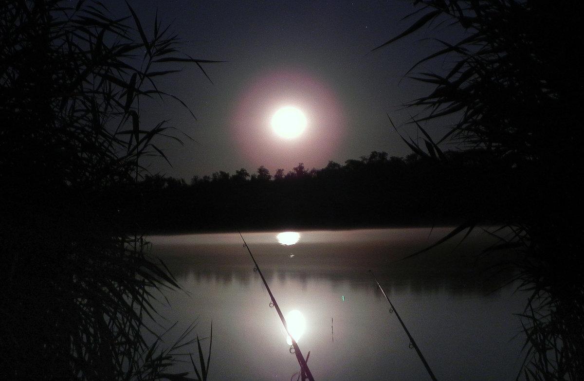 картинки рыбалки ночью часто, огда