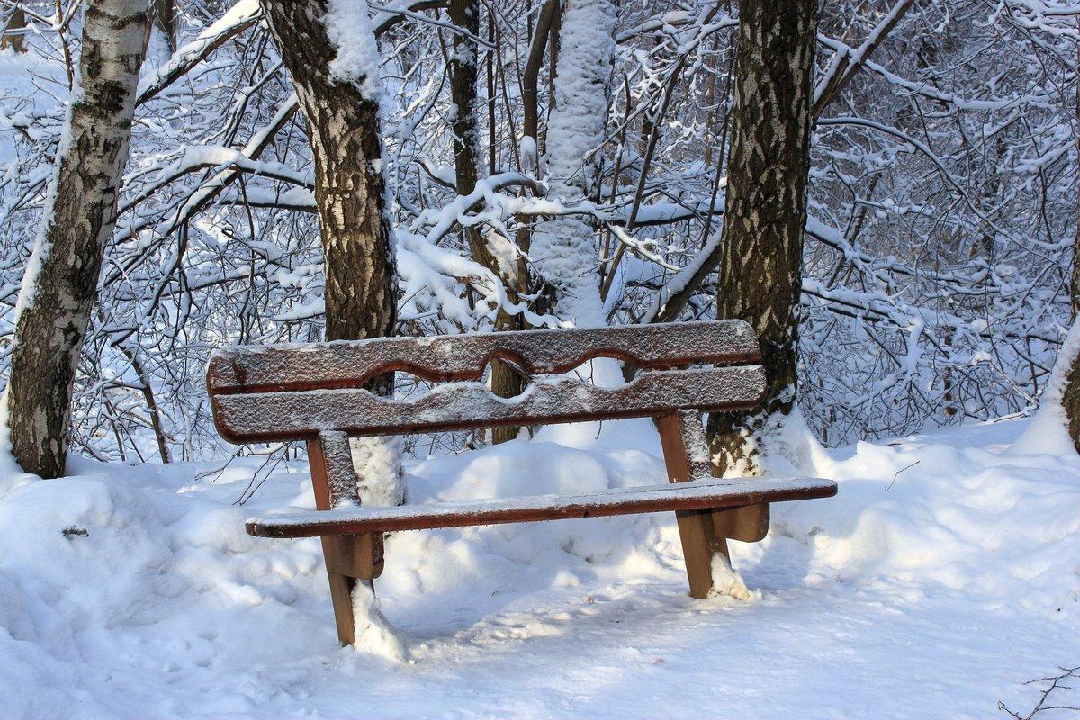 фото скамейка зимой прикладной урбанистики