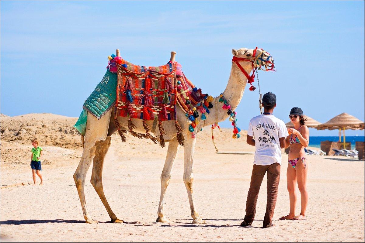 фото с турпохода в египте сайте