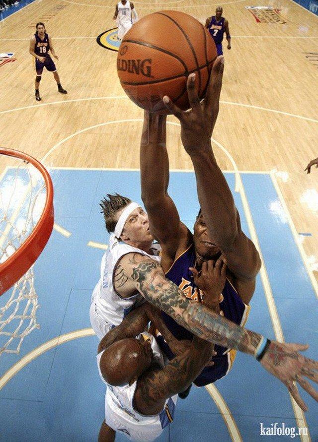 Баскетбол картинки приколы