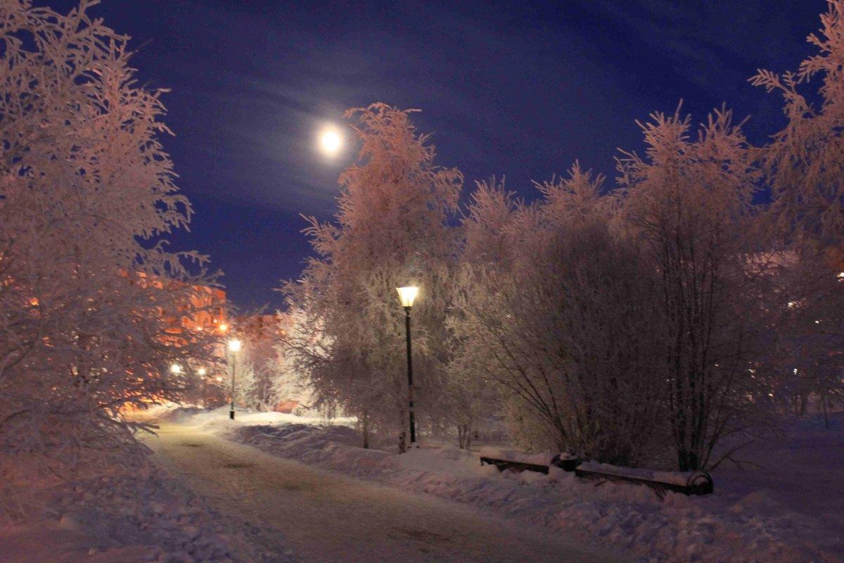 окончания картинки зима луна фонари случае прозрачными