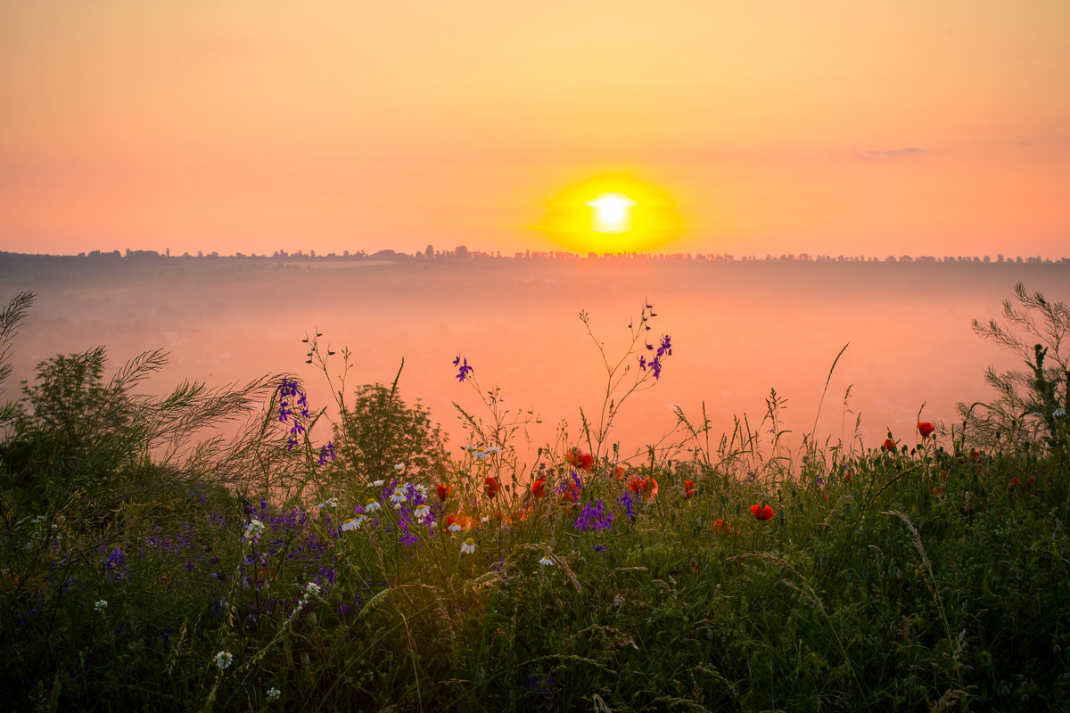 Картинка раннего утра восход