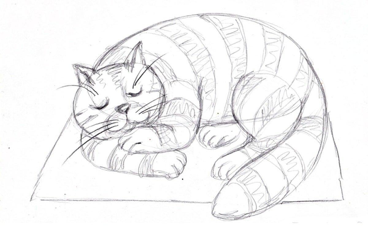 Родительской открытки, детские рисунки кошек карандашом
