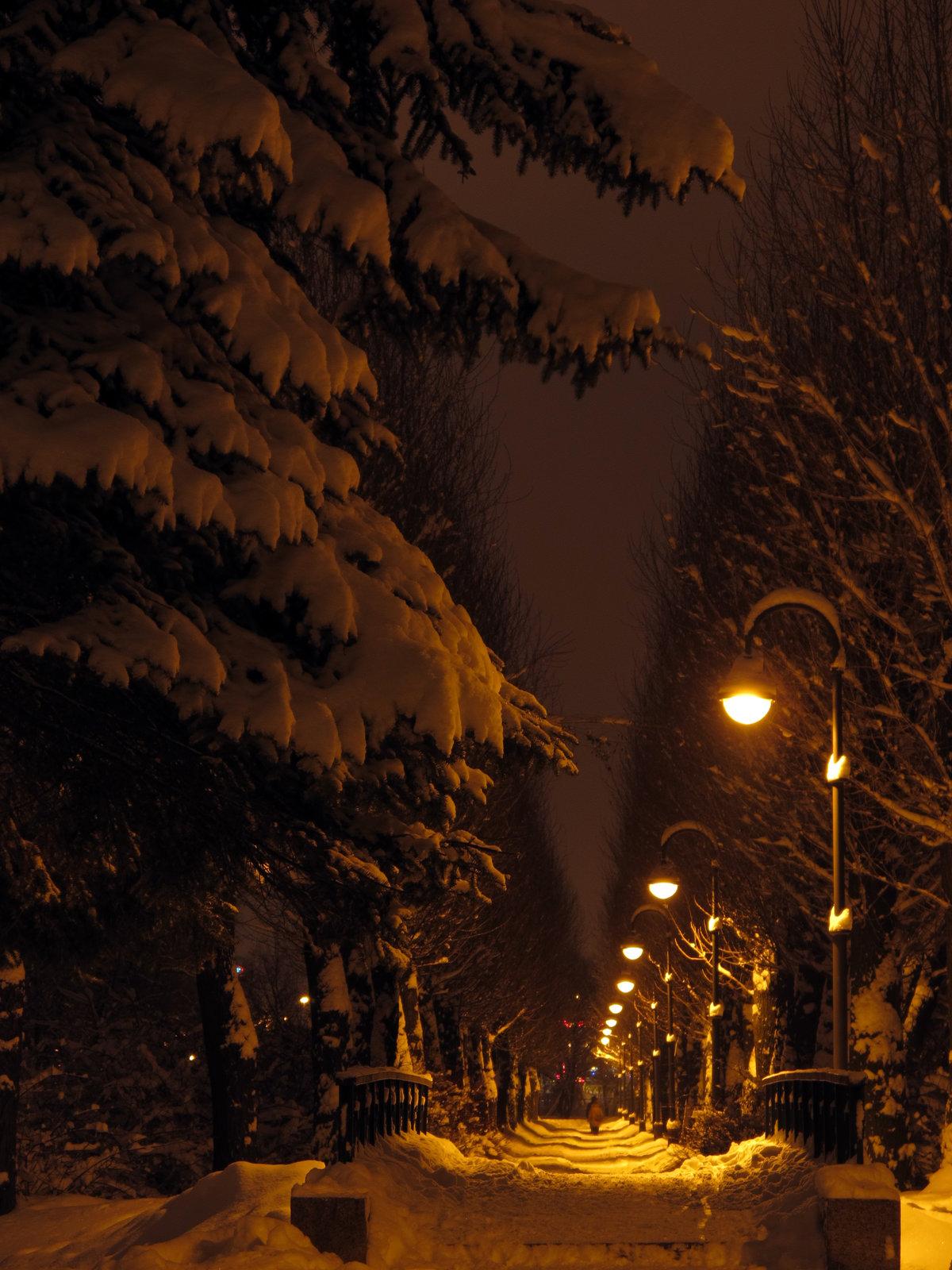 Картинки ночной город зима