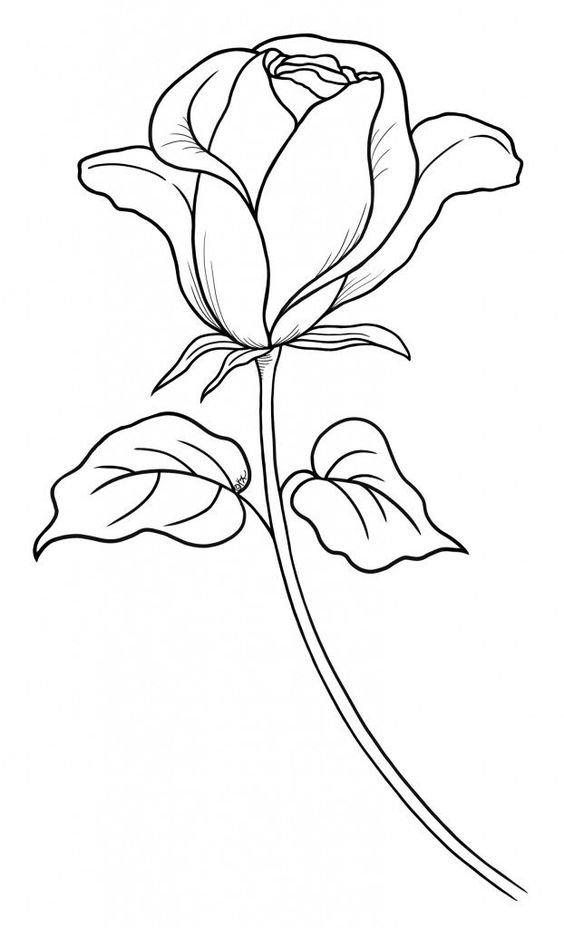 легкие рисунки цветов придать для этого
