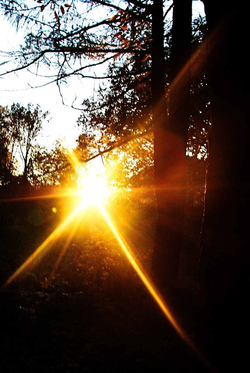 Фото солнечного лучика