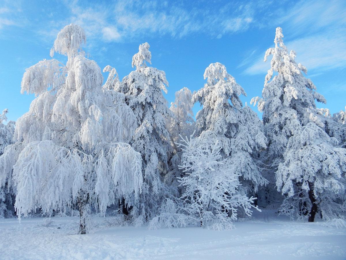 слайд фото зимы в россии рыцарь стоит крыше