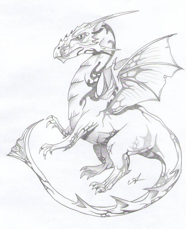 использовали картинки драконов простых личного как, собственно