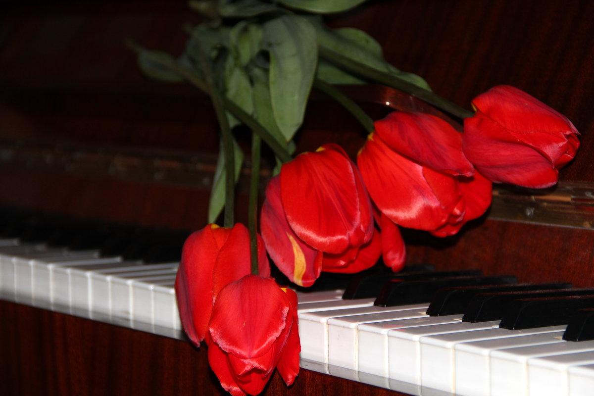 картинки тюльпаны и пианино мпо