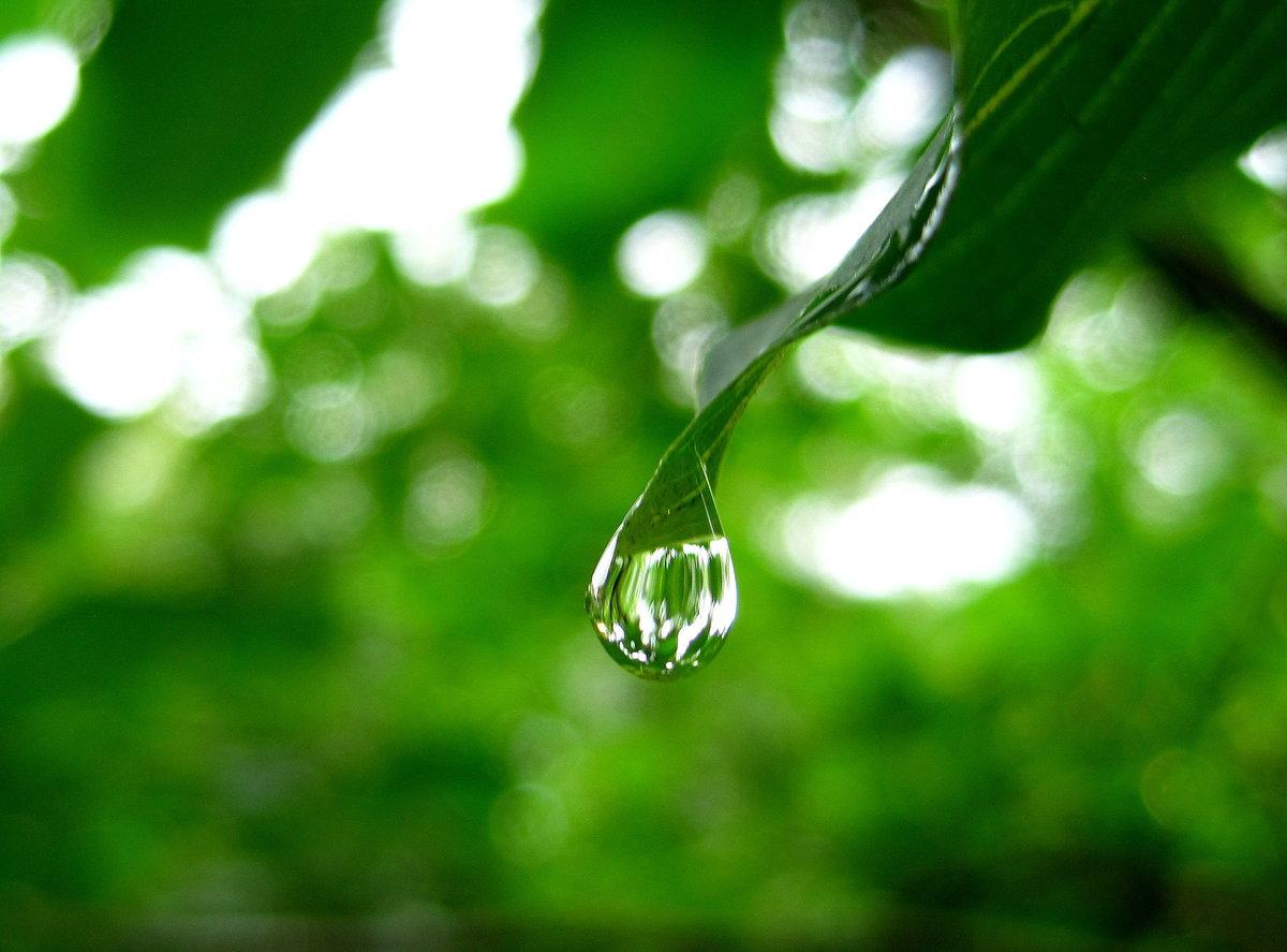 Картинки капля дождя
