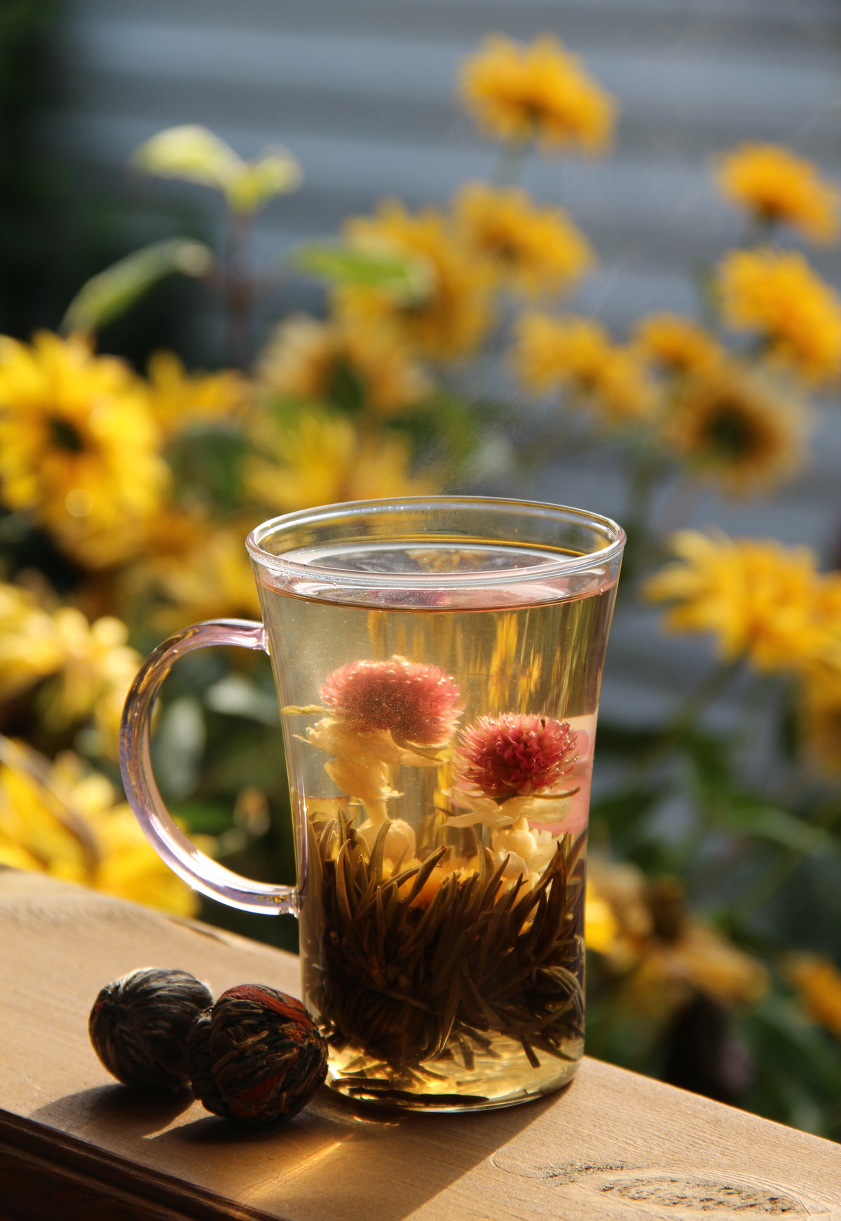 цветы чая картинки цены